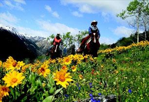 Colorado Horseback Rides, Colorado Horseback Riding