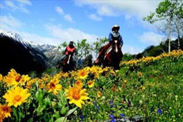 Colorado Rafting Packages, Colorado Horseback Riding