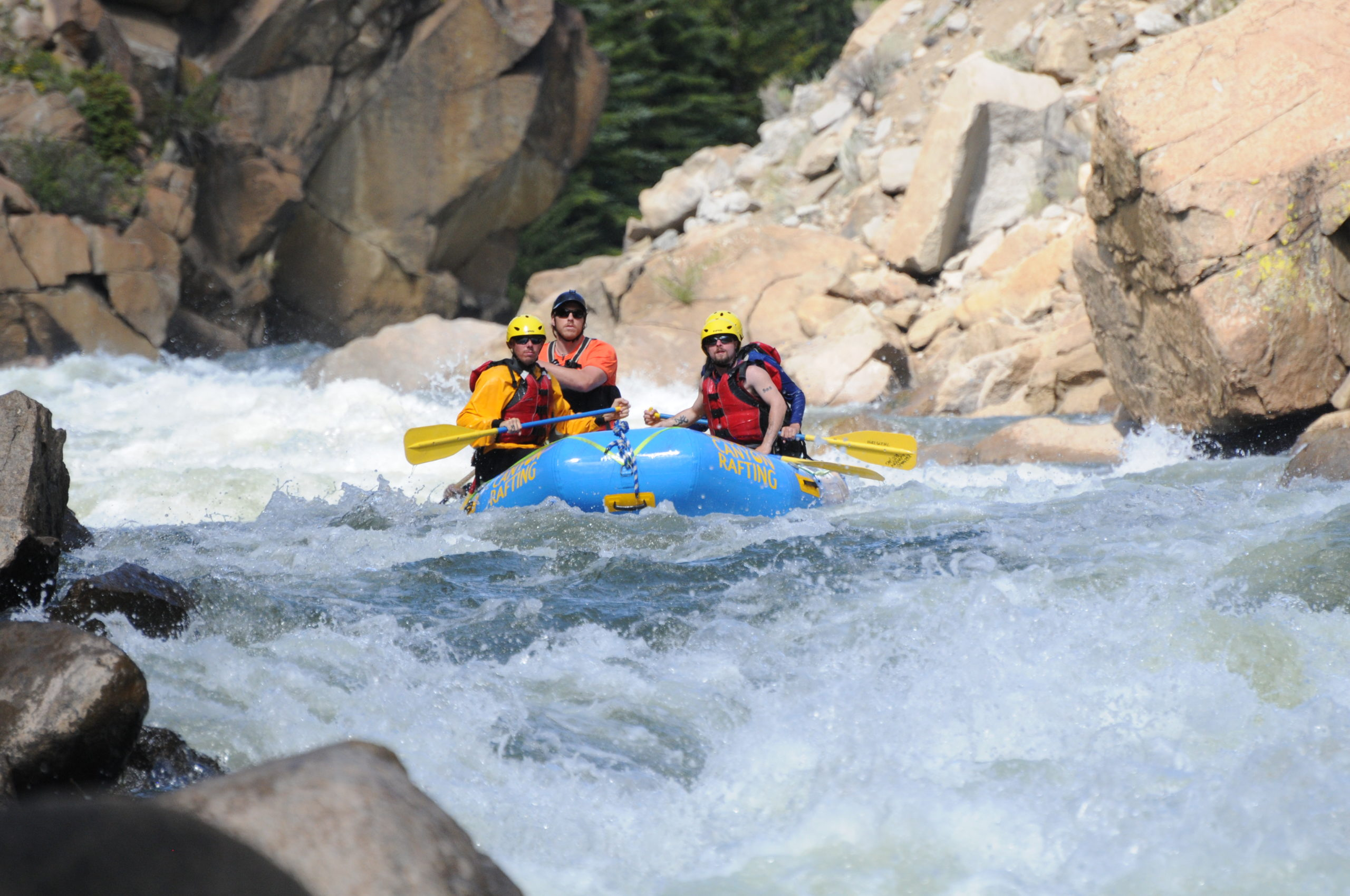 Pine Creek rapid whitewater rafting near buena vista co