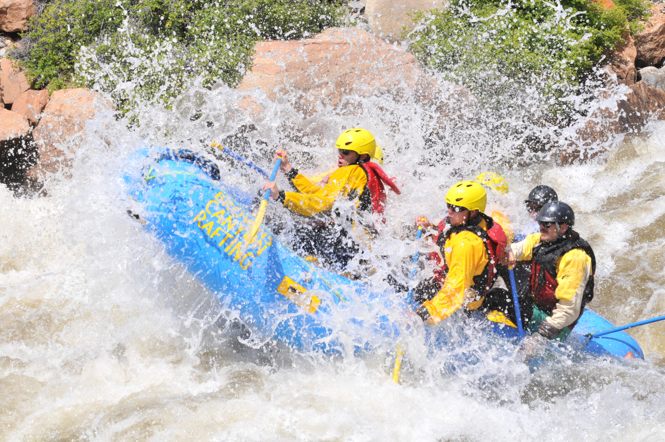 arkansas river white water rafting colorado