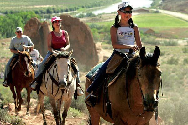 Colorado horseback trail rides buena vista